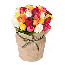 30 Assorted Roses: Send Anniversary Flowers to Australia