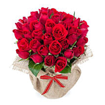 30 Red Roses: Send Anniversary Roses to Australia