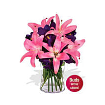 Pink Beauty: Flower Delivery in Sydney