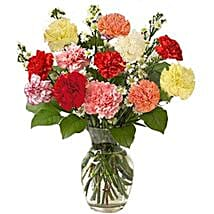 12 Multi color Carnations in Vase: Send Birthday Gifts to Brampton