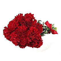 12 Red Carnations: Gifts to Canada for Boyfriend