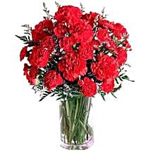 Carnation Delight: Gifts to Canada for Boyfriend