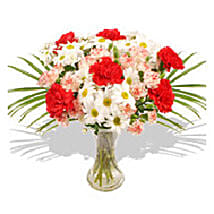 Bouquet of Carnation: Send Gifts to France