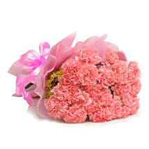 15 Pink Carnations: Send Flowers to Hoshiarpur