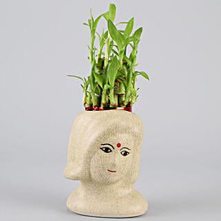 2 Layer Bamboo In Artistic Ceramic Pot: Home Decor