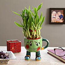 2 Layer Lucky Bamboo In Smiley Mug Green: Send Plants for Birthday