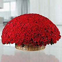 365 Red Roses Basket: Valentine Gifts for Wife