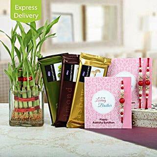 Gift hamper of rakhis, lucky bamboo and chocolates