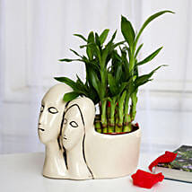 Lucky Bamboo Plant in Couple Pot: