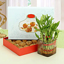 Besan Laddoo with Luck: Lucky Bamboo for Mothers Day