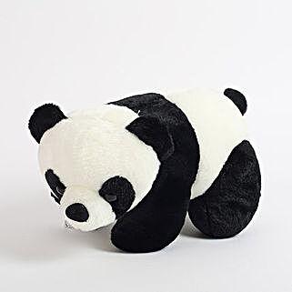 Black N White Panda: Soft Toys for Kids