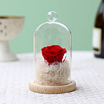 Classic- Forever Red Rose In Glass Dome: Karwa Chauth Flowers