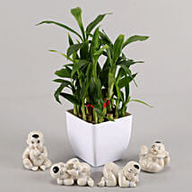 Two layer bamboo in a white tin vase with ceramic baby buddha set