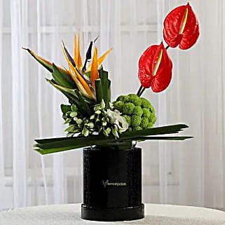 Exotic Box of Anthuriums & Bird of Paradise: Exotic Flowers