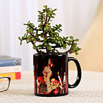 Jade Plant In Black Personalised Mug: Plants for Husband