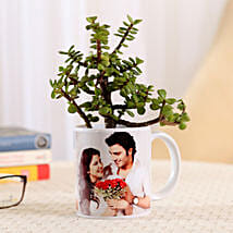 Jade Plant In Personalised Mug-White: