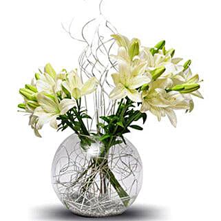 Lily celebration: