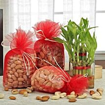 Love For Combo: Send Bhai Dooj Gift Hampers