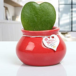 Love Plant: Valentine Gifts to Aligarh