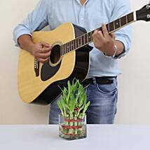 Luck & Music Combined: Lucky Bamboo for Him