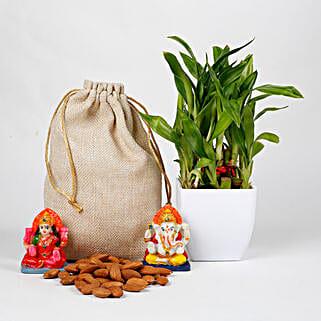 Lucky Bamboo Diwali Hamper: Plants N Laxmi Ganesh Gifts