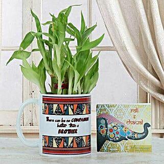 Lucky Bamboo N Mug: Bhai Dooj Gifts Srinagar