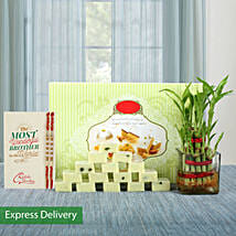 Lucky Bamboo Rakhi Love: Rakhi With Sweets Gandhinagar