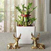 Lucky Bamboo With Deers: Send Diwali Gifts to Meerut