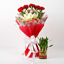 Mixed Flowers & Two Layer Bamboo Plant Combo: Send Flowers to Kiccha