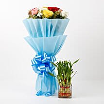 Mixed Roses & Two Layer Lucky Bamboo Combo: Flowers to Kiccha