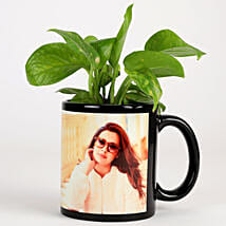 Money Plant In Personalised Mug-Black: Personalised Pot plants