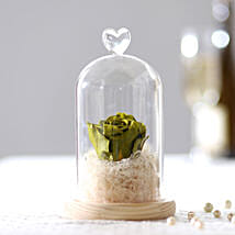 Olive Green Forever Rose In Glass Dome: