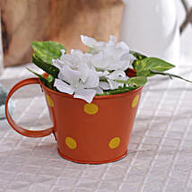 Orange Polka Planter: Garden Tools and Accessories