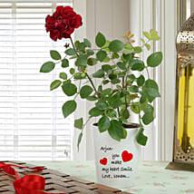 Personalised Red Rose Plant: Send Valentine Gifts to Faridabad