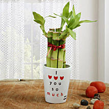 Personalized Love Bamboo: Valentines Day Lucky Bamboo