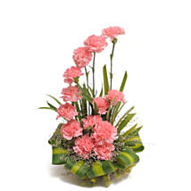 Pink Carnations Basket Arrangement: Birthday Flowers