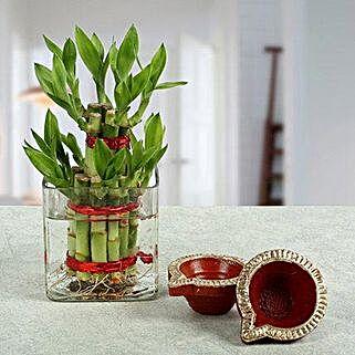 Prosperous Diwali Festival: Send Plants N Diyas