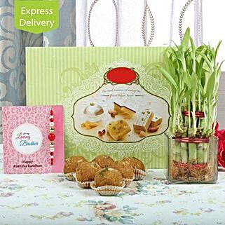 Rakhi Ladoo And Lucky Plant: Rakhi With Sweets Roorkee