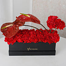Red Floral Beauty Box: Send Anthuriums