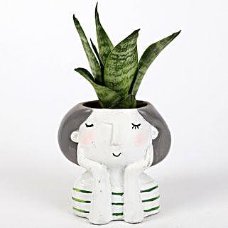 Snakeskin Sansevieria Plant In Raisin Pot: Succulents and Cactus Plants