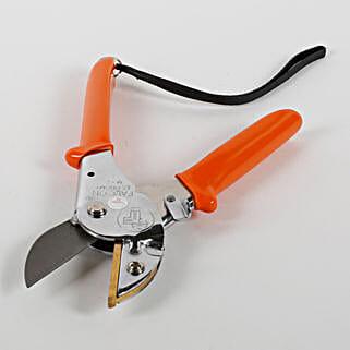 Steel Blade Pruner: Gardening Pruners