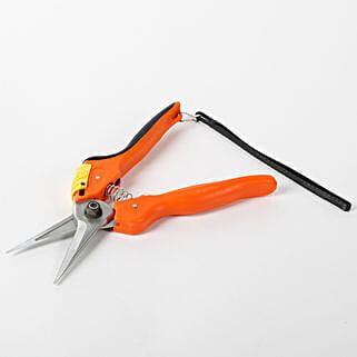 Steel Pruning Secateur Multicolor: