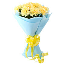 Sundripped Carnations: Gifts Delivery In Tollygunge