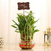 Three Layer Lucky Bamboo With Love You Tag: Send Plants to Bangalore