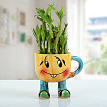 Two Layer Bamboo Plant With Smiley Vase: Send Gifts to Jajpur