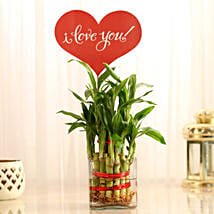 Two Layer Lucky Bamboo With I Love You Tag: Send Plants for Anniversary