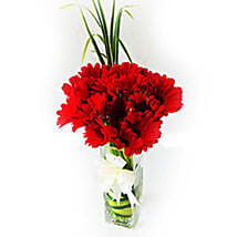 Sizzling Red Gerberas: Send Anniversary Flowers to Malaysia