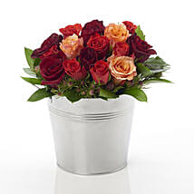 A Rosy Bucket: Flower Delivery Wellington