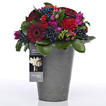 Bold N Beautiful Flowers: Send Anniversary Gifts To New Zealand
