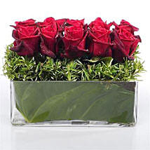 Heaven of Red Roses: Same Day Gift Delivery in New Zealand